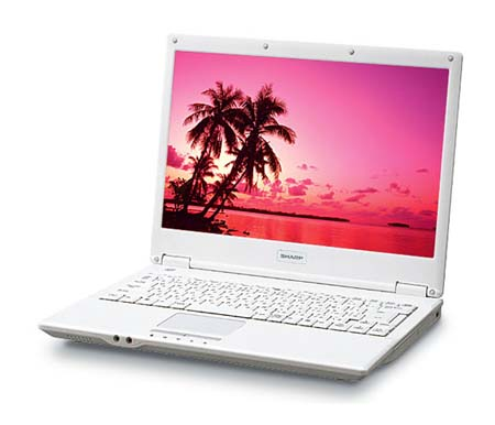 Sharp Mebius PC-CW50T