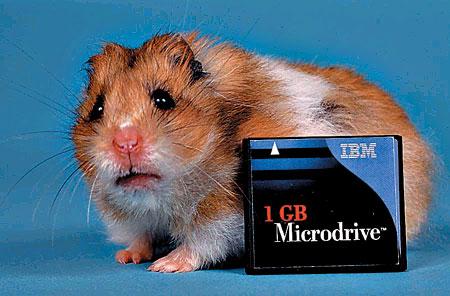 IBM Microdrive 1Gb