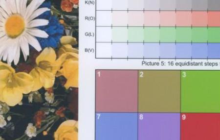 Canon PIXMA МP530: текст и графика 2