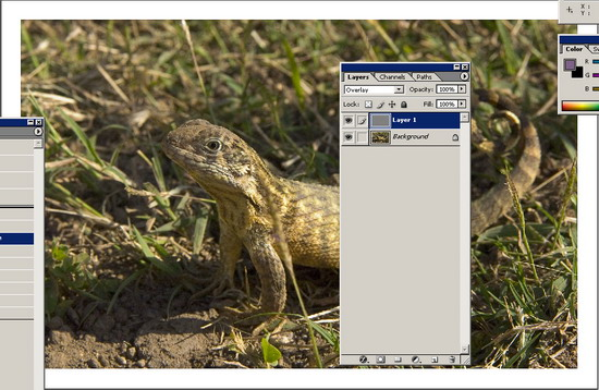 Обработка фото. Повышение резкости 6