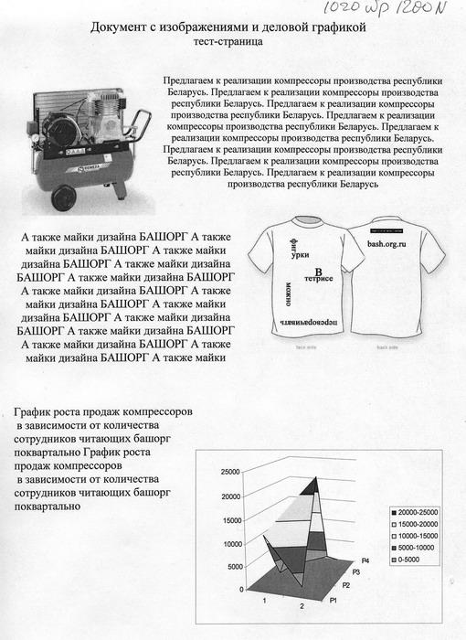 Отпечаток Wellprint 3