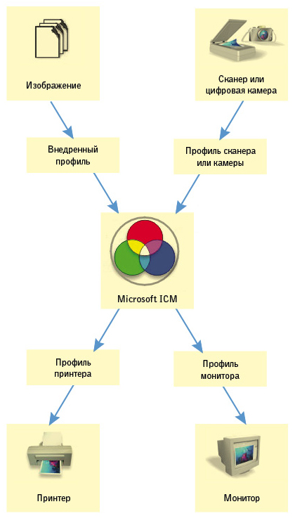 Так работает система управления цветом. Схема сделана из скриншота настроек цвета программы Corel Draw