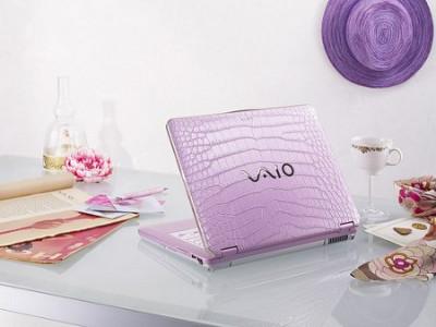 Sony VAIO CS390