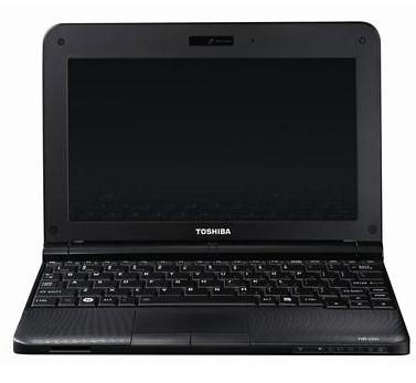 Toshiba Mini NB250