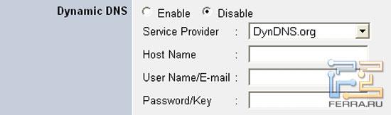 Камере нужно знать логин и пароль для сервиса динамического DNS