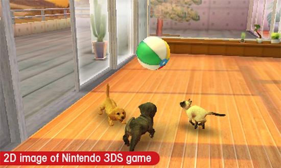 Впрочем, Nintendogs на то и + Cats - котики снисходят до дружбы с собачками и с удовольствием разделяют их игры