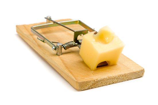 p_mousetrap