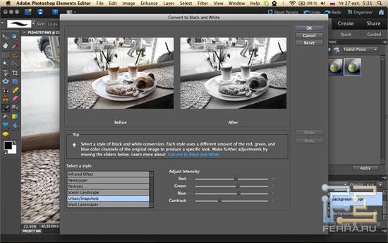 Конвертация фотографии в ч/б из Adobe Photoshop Elements 10