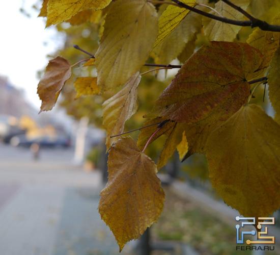 Panasonic Lumix GX1 + Leica DG Summilux 25/1.4: ISO 160, 25 мм, 1/320, f/2.2
