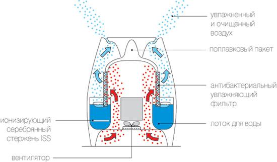 Конструкция «традиционных» увлажнителей марок Air-O-Swiss и Boneco предполагает использование «ионизирующего серебряного стержня»
