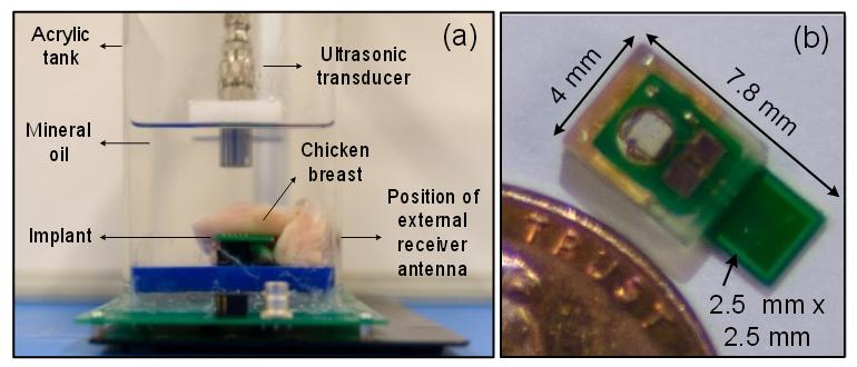 В США разработан крошечный медицинский чип-имплантат, получающий питание от звука