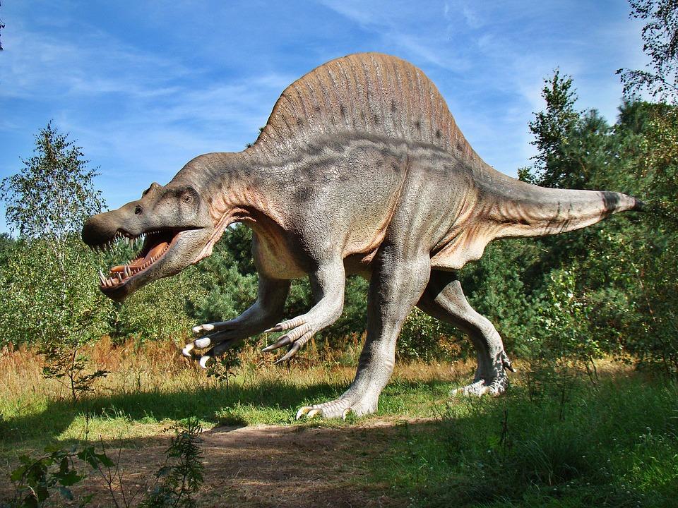 яйца 000 динозавров