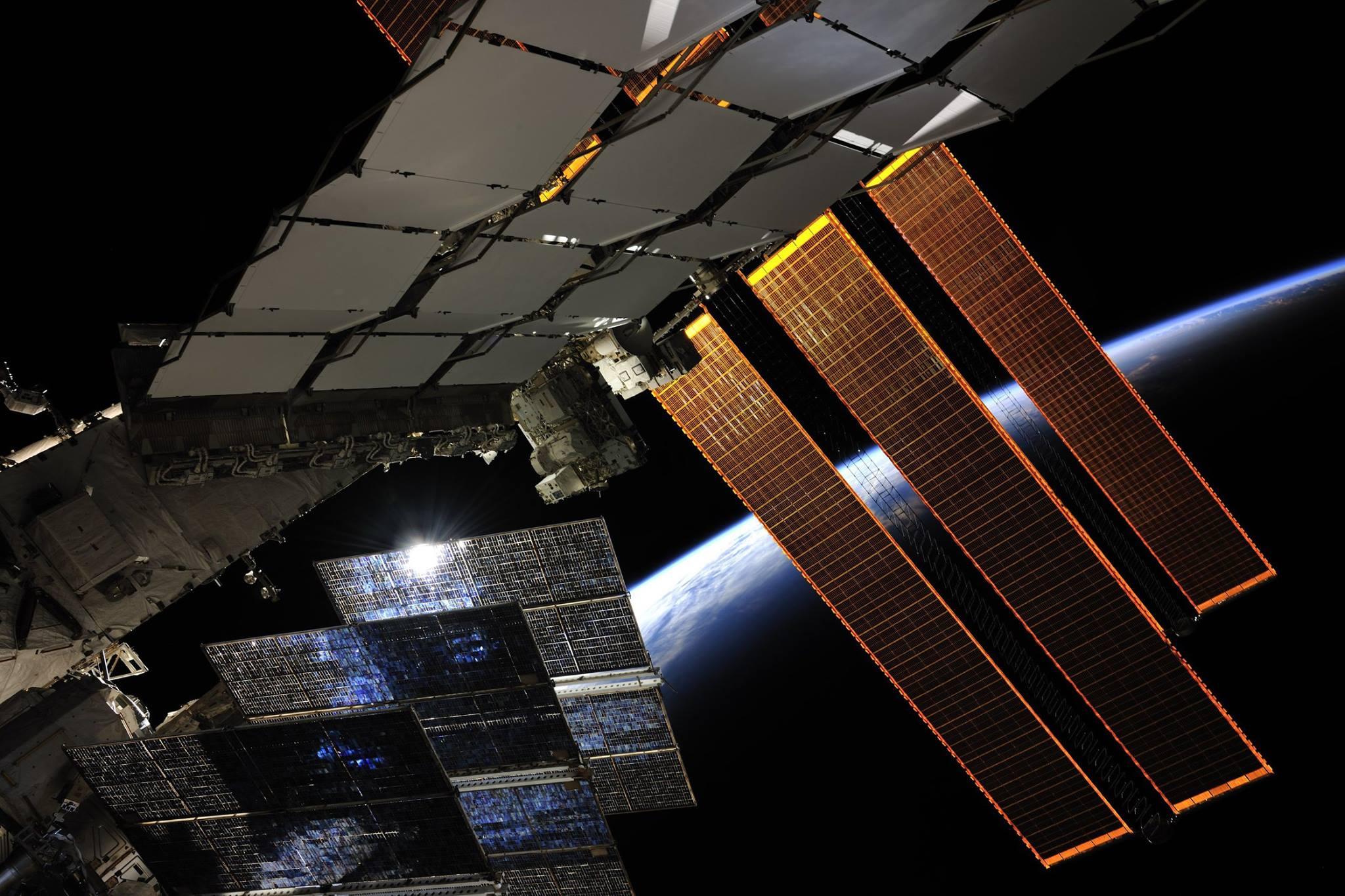 Роскосмос допускает наличие внеземных микроорганизмов на МКС