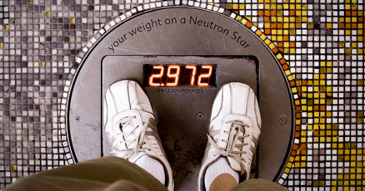 Как выбрать напольные весы для дома советы по выбору