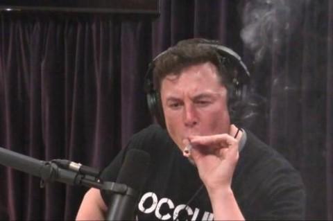 Илон Маск ответил по-русски на мем «Как тебе такое, Илон Маск?»