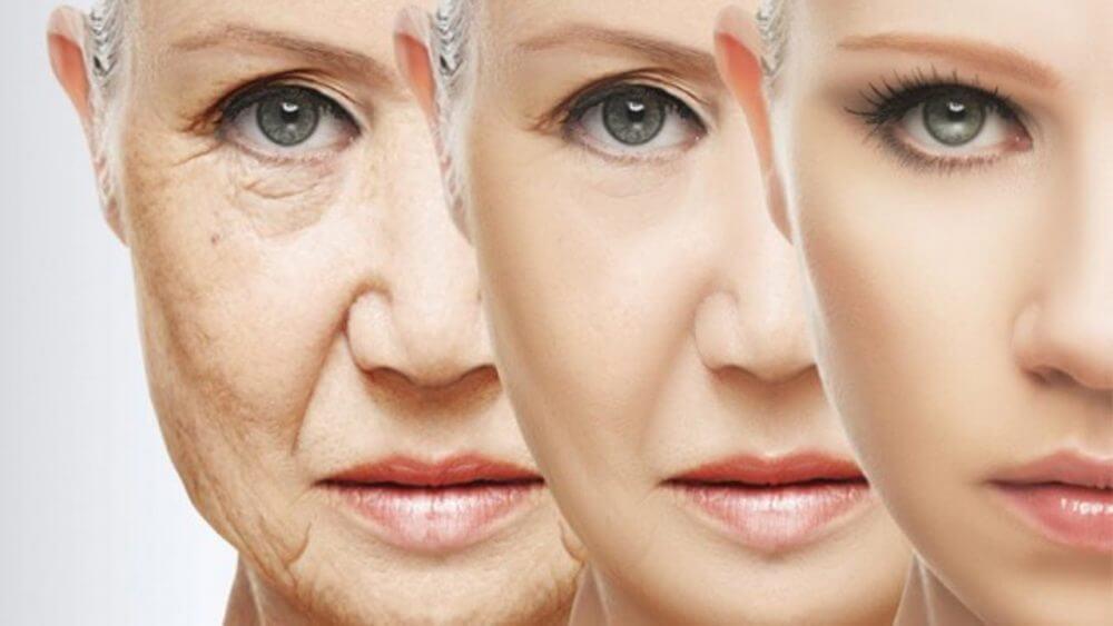 Учёные вычислили гены, которые отвечают за старение