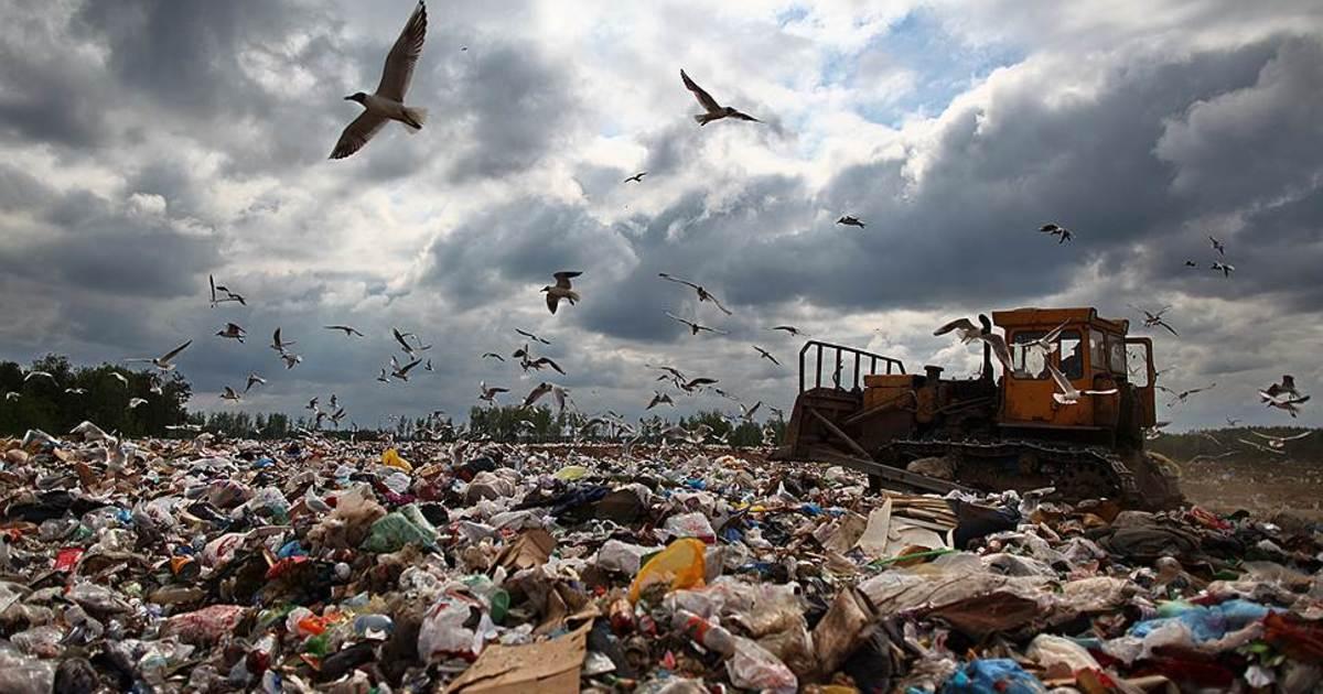 В России могут подорожать товары из-за новых инициатив экологов