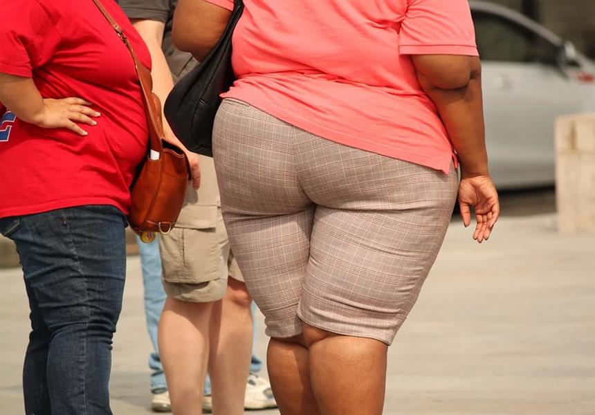 Ожирение связали с разрушением мозга
