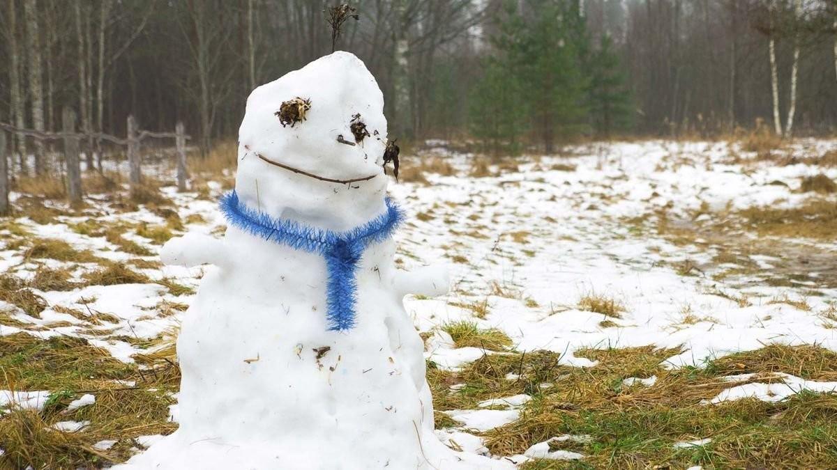 Врачи выявили вред теплой зимы для организма