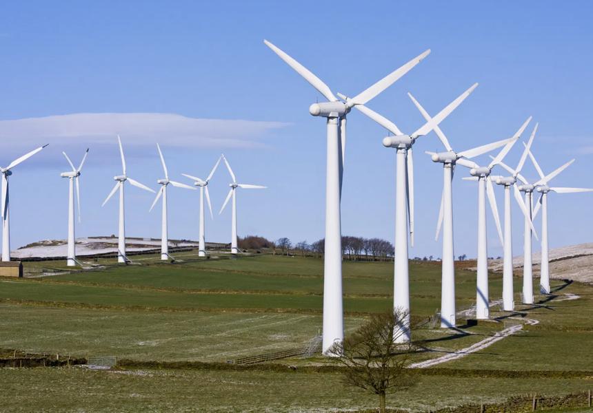 Экологичные источники энергии оказались опасны для природы