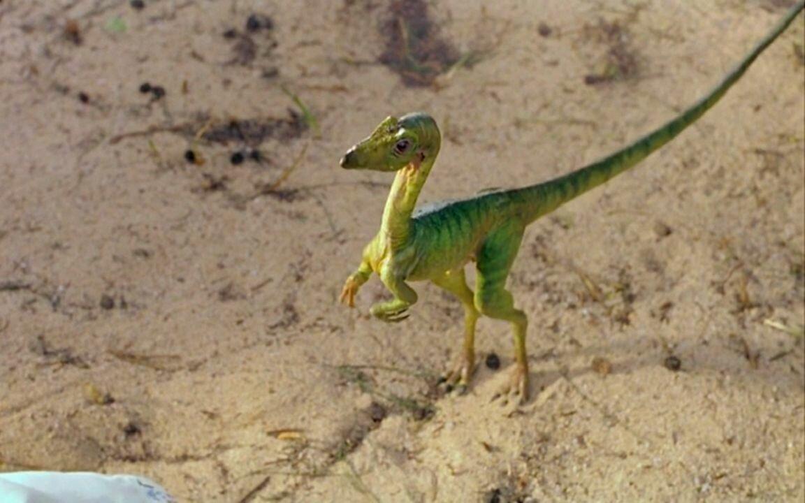Найден десятисантиметровый предок динозавров