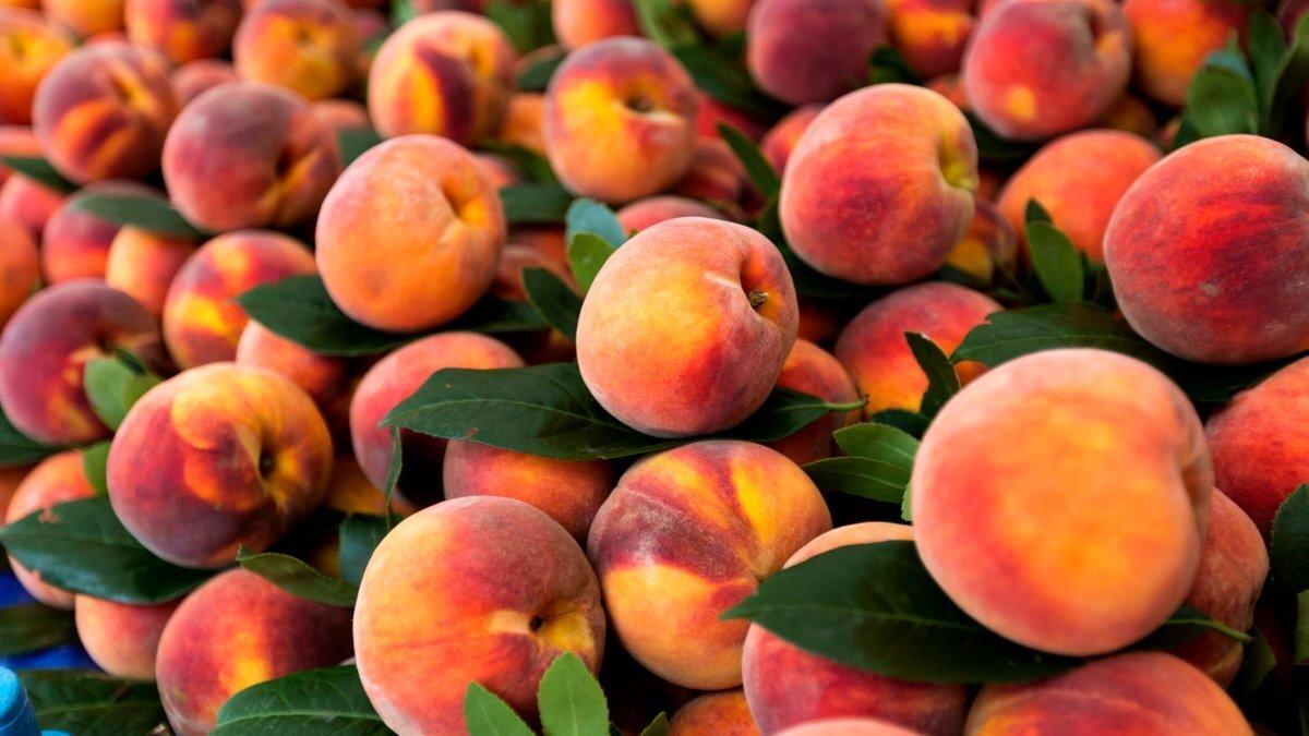 Врач рассказала, каким людям есть персики и абрикосы опасно для здоровья