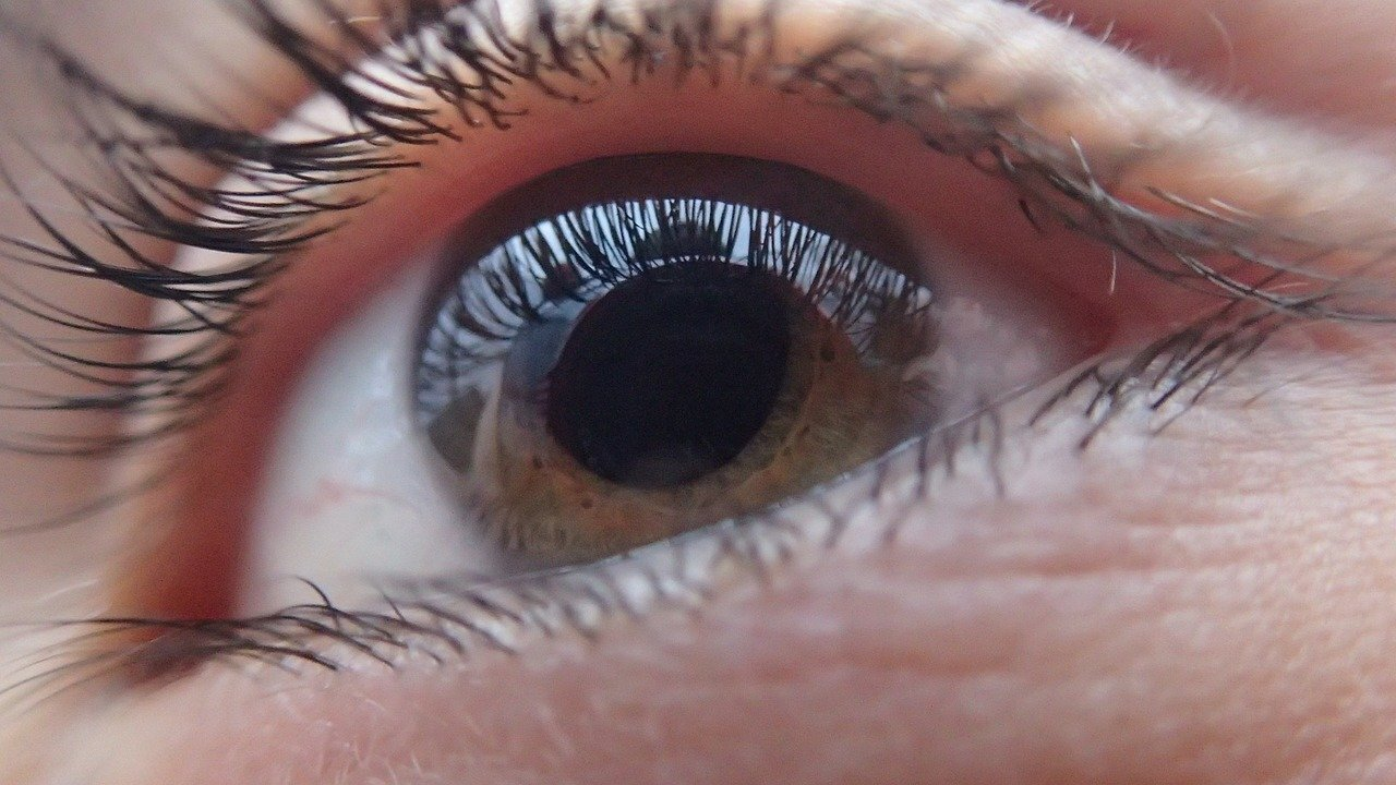 В России создадут чип для лечения слепых людей