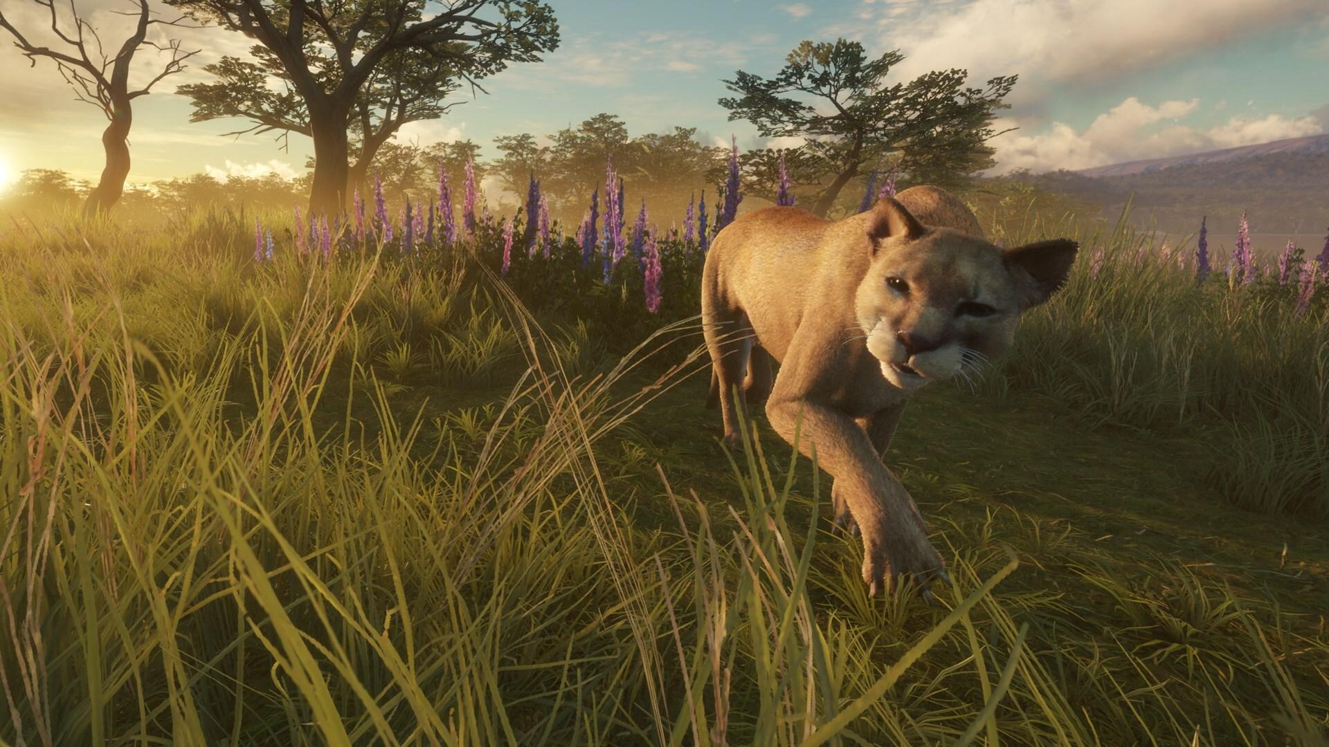 Реалистичный симулятор охоты в дикой природе продается дешевле 200 рублей