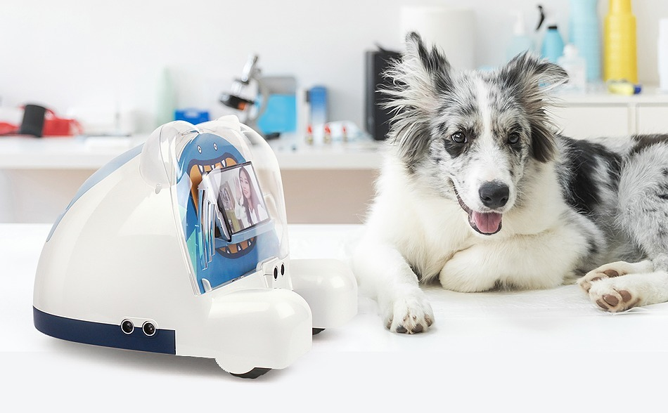 Создан робот для ухода за домашними животными