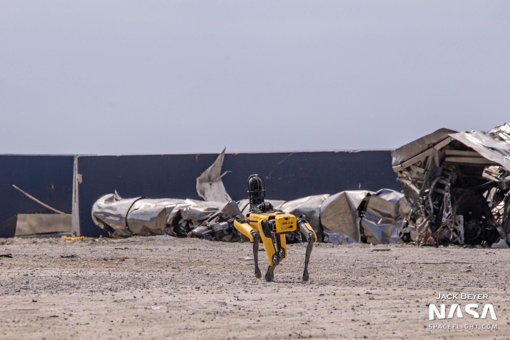 На видео показали робопса на площадке с частями взорвавшегося корабля SpaceX