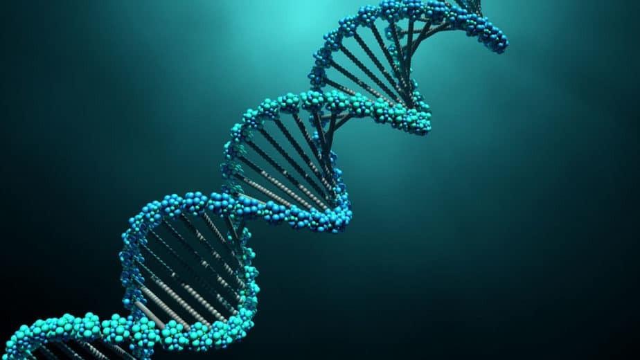 Обнаружена самая древняя ДНК в мире