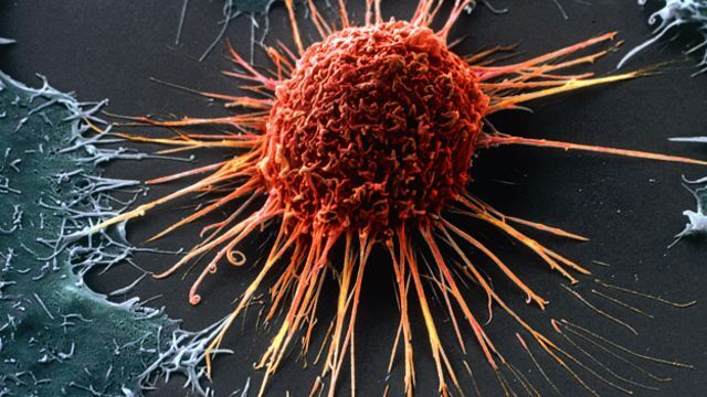 Учёные впервые получили эффективное вещество для лечения рака