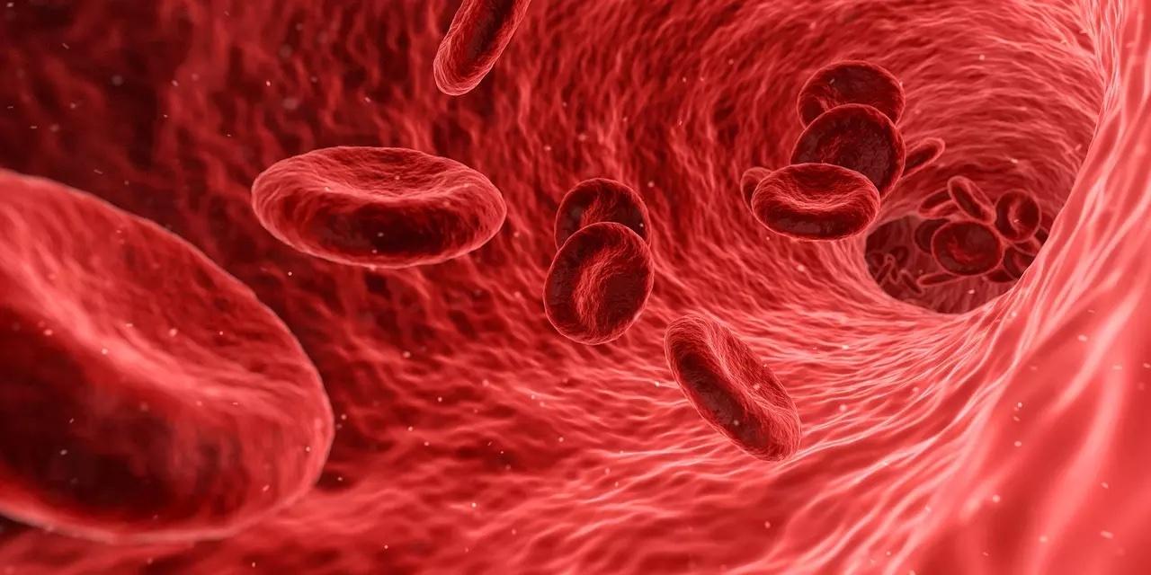 Учёные рассказали о связи между группой крови и определёнными серьёзными заболеваниями
