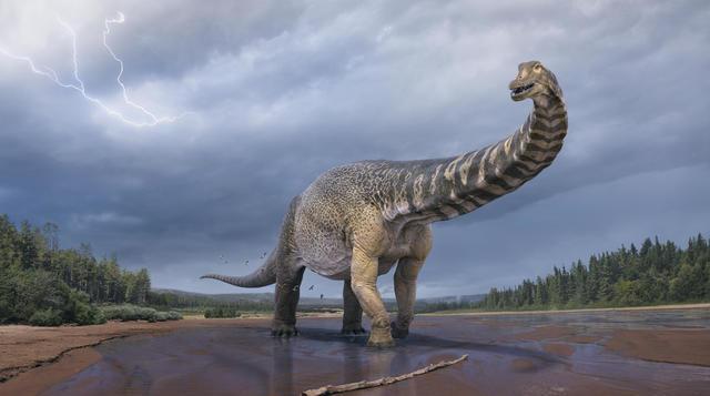Классифицирован новый вид динозавров