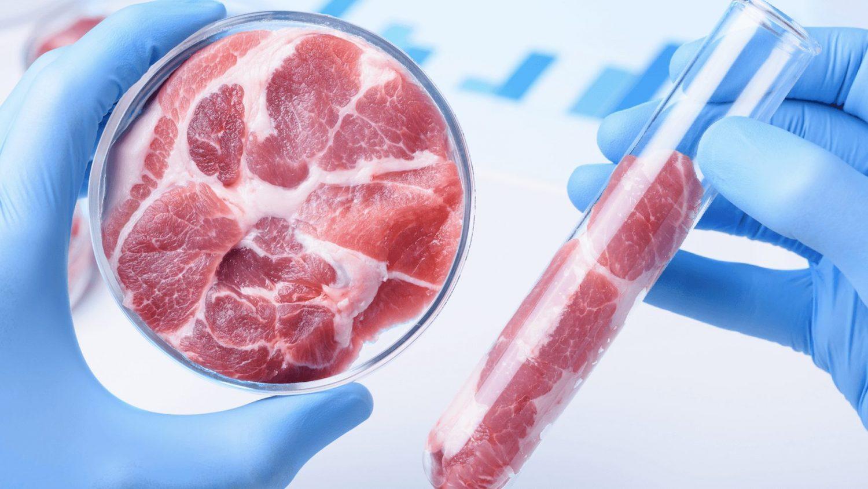 Ученые выяснили, полезно ли искусственное мясо