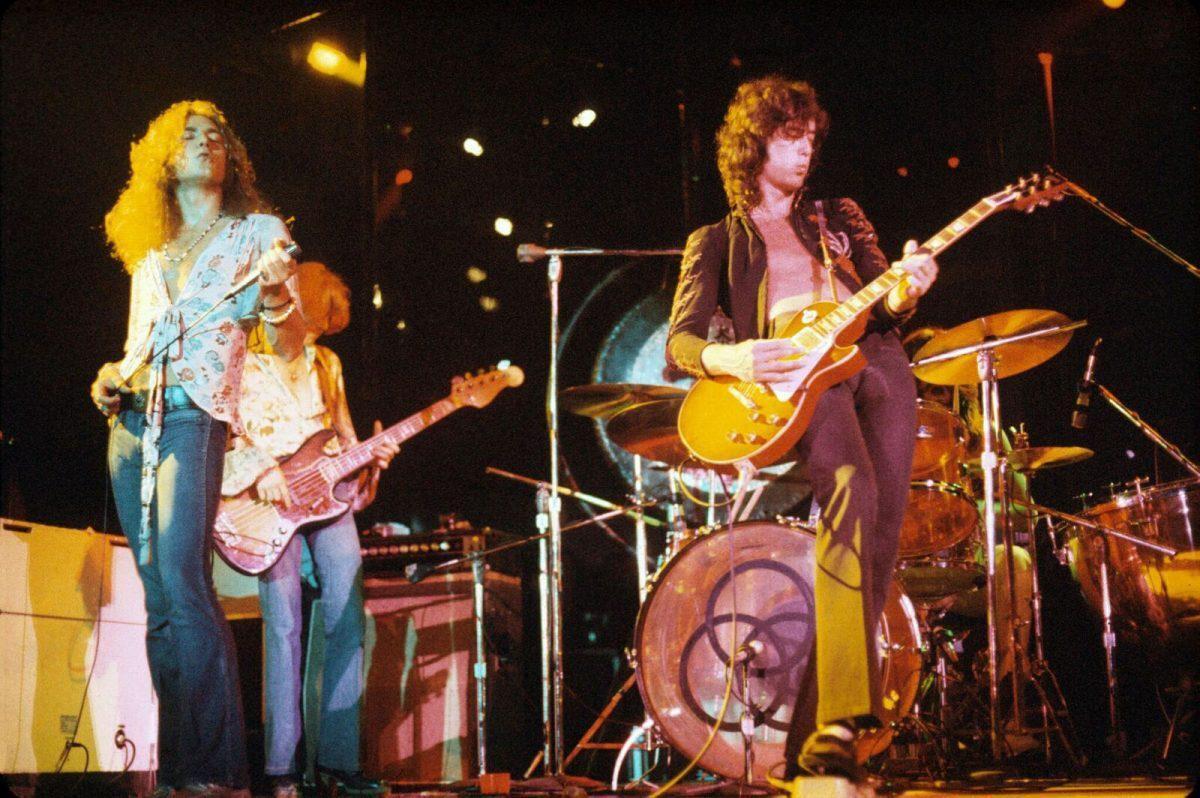Учёные назвали новый вид лягушек в честь легендарной рок-группы Led Zeppelin