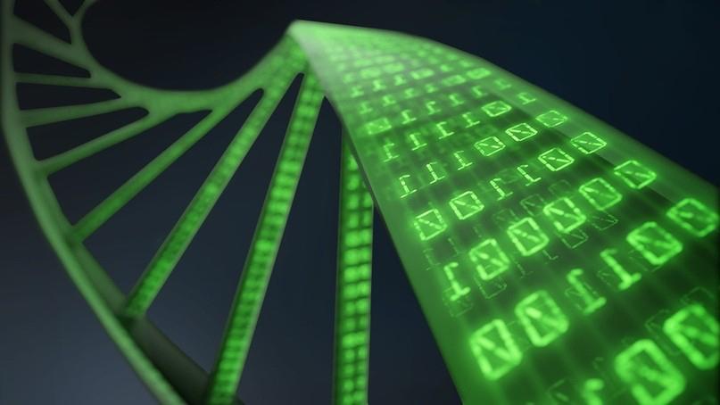 Российские учёные впервые использовали квантовый компьютер для расшифровки генома вируса