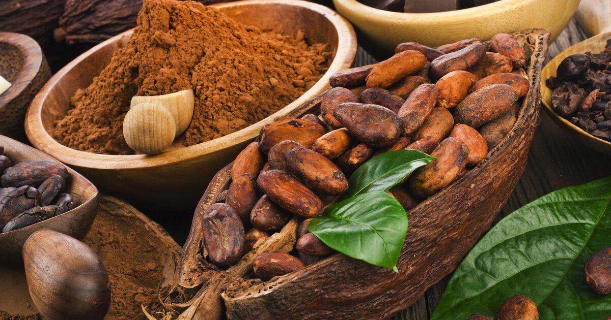 Учёные назвали какао одним из лучших напитков для спортсменов