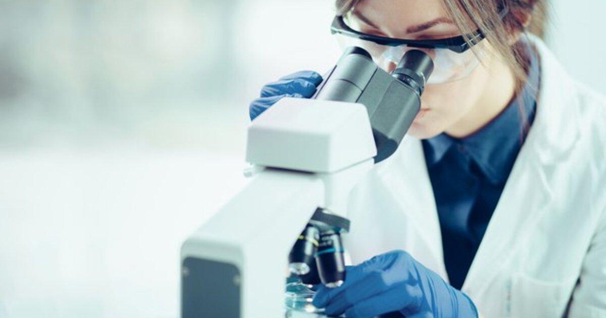 Учёный раскрыл сработавший способ продлить жизнь животным