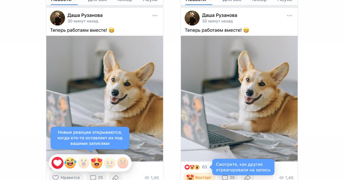 «ВКонтакте» сделала кнопку «Нравится» с несколькими вариантами, как в Facebook