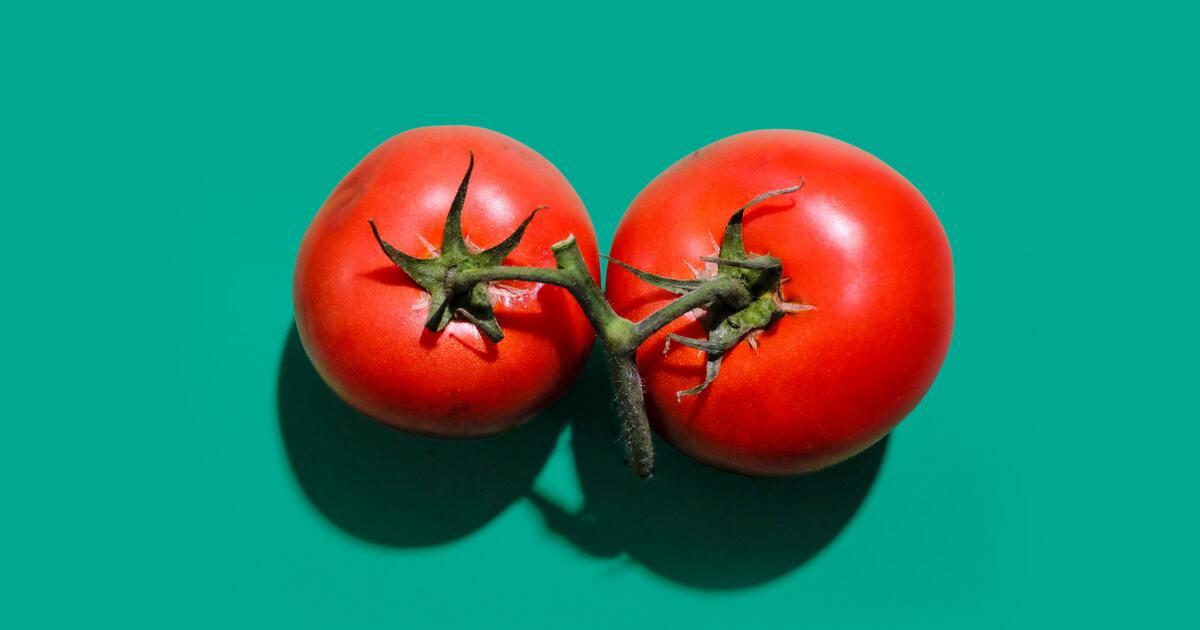 В помидоры внедрили вакцину от коронавируса