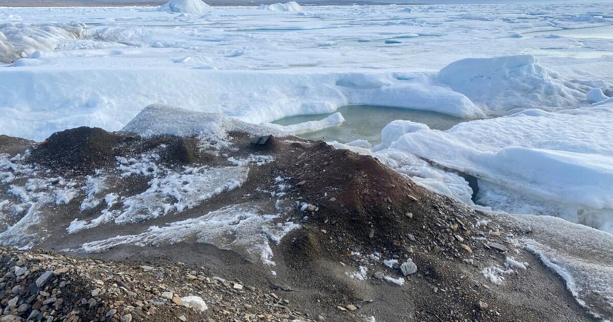 Обнаружен новый самый северный остров