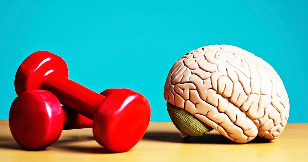 Учёные доказали, что у спортсменов память лучше, чем у «ботаников»
