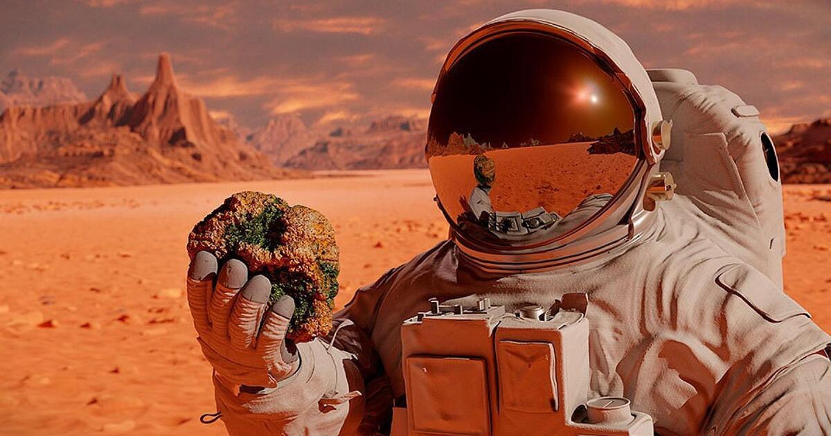 Учёные рассчитали максимальный срок безопасной для человека жизни на Марсе