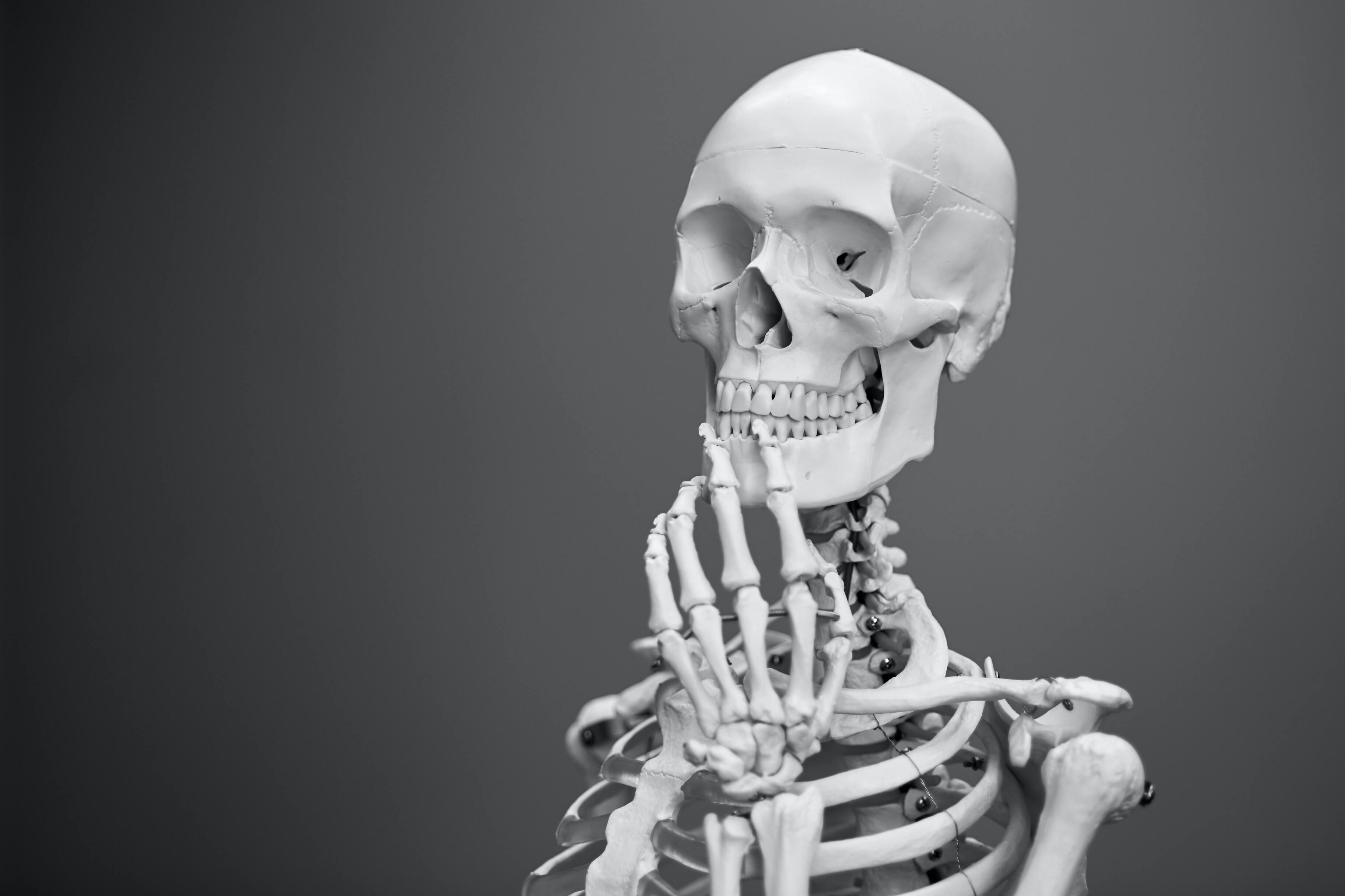 Учёные протестировали замену человеческим костям