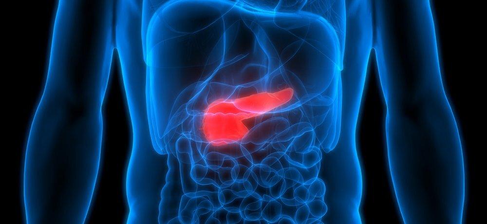 Создан гель для восстановления поджелудочной железы у больных раком