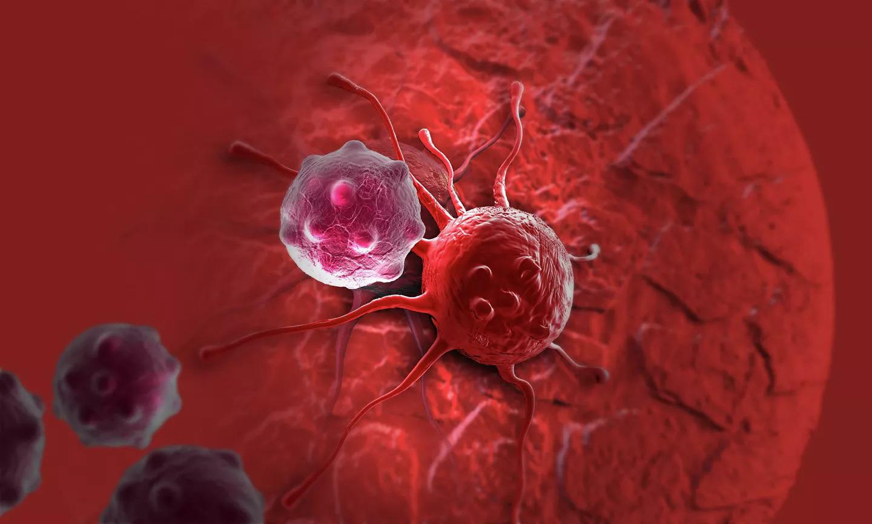Учёные открыли новый способ борьбы с раком в тяжёлой стадии