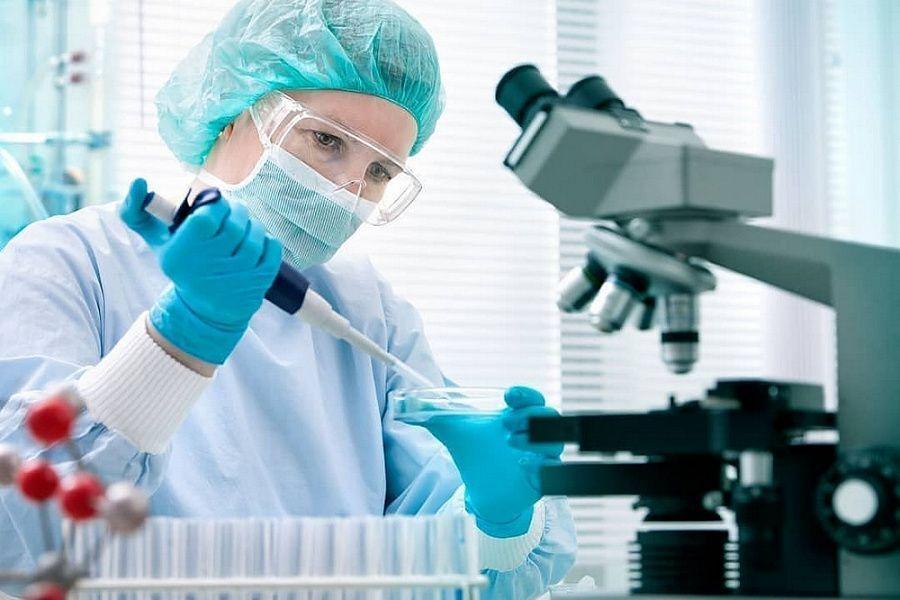 Учёные обнаружили эффективное средство от коронавируса