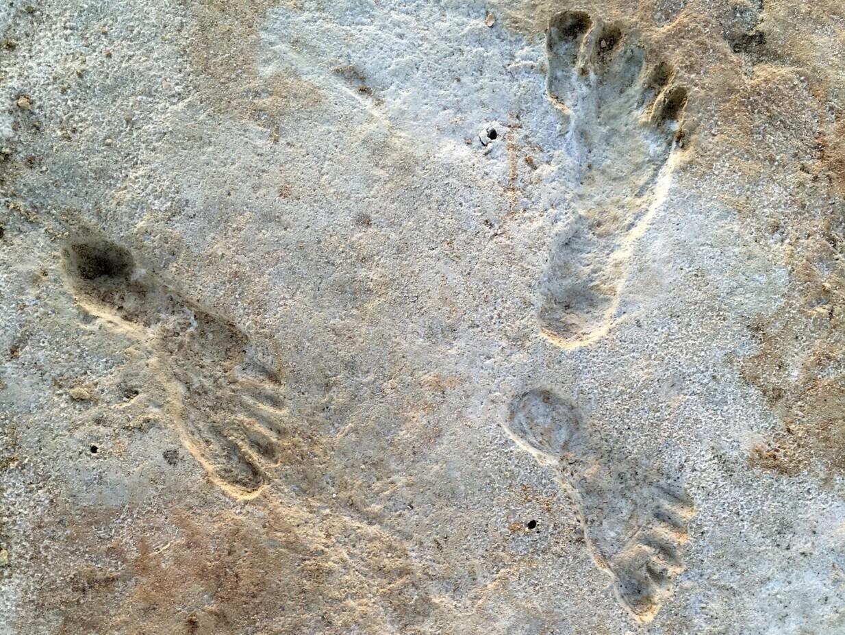 Учёные нашли следы древнейших американцев