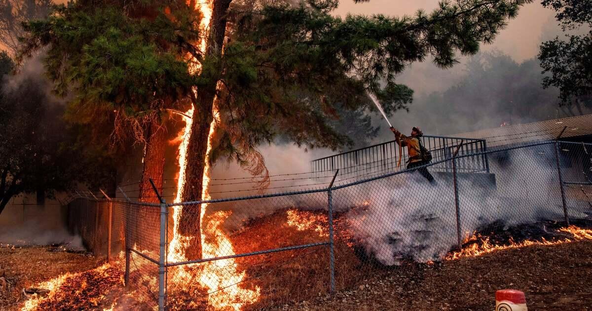 Google Карты начнут отображать лесные пожары